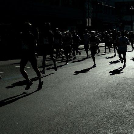 Shadows Part 17