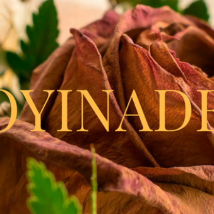 "Oyinade Episode 10: ""Strange House…"""
