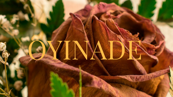 """Oyinade Episode 8: """"Blood and Fire."""""""